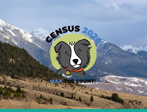 Your Guide to Census 2020 Rumors and Facts