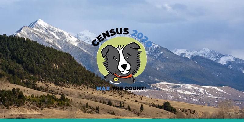 Census 2020 facts